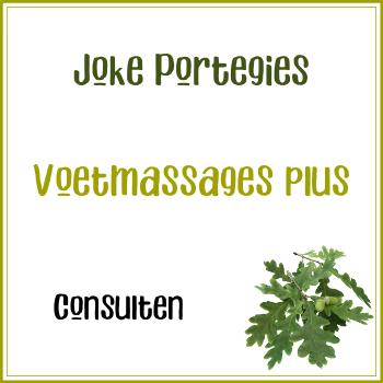 Consult: Joke Portegies