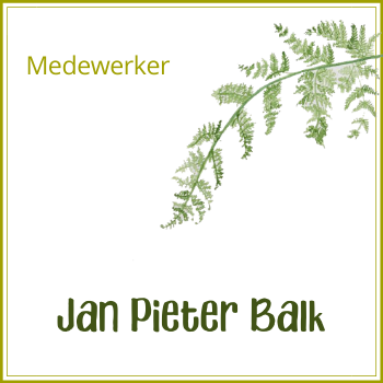 Jan Pieter Balk