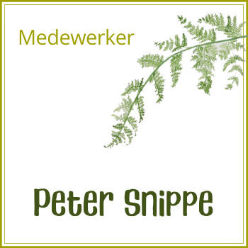 Peter Snippe