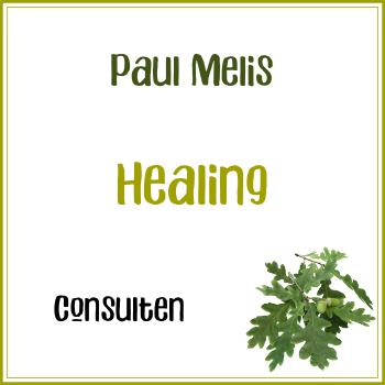 Consult: Paul Melis