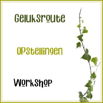 Workshop: Opstellingen